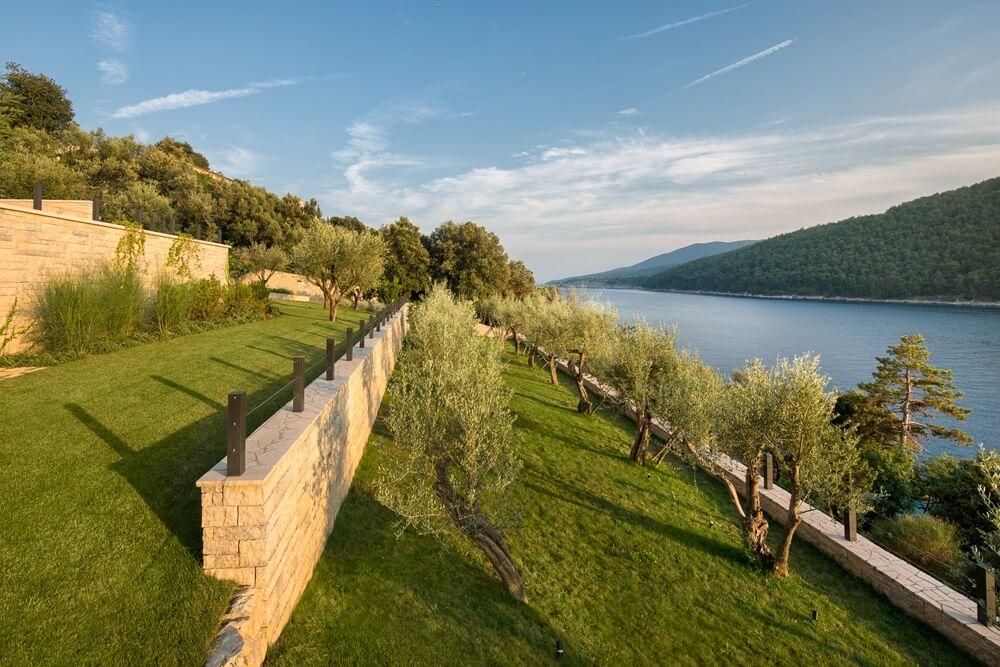 Villa Vlastelini II - olive grove